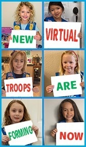 VirtualTroops_RightRail_LW2020_Troop4362_Daisysigns_lindapolasek_yahoo_com